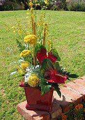 Flower Arrangement for Barbara Azimov