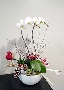 Faux Orchid Arrangements width=